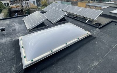 Vernieuwd plat dak in Niel